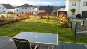 Herbstlicher Garten mit Sträuchern und Rasen